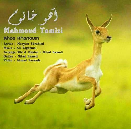 دانلود موزیک جدید محمود تمیزی آهو خانوم