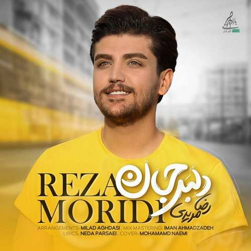 دانلود موزیک جدید رضا مریدی دلبر جان
