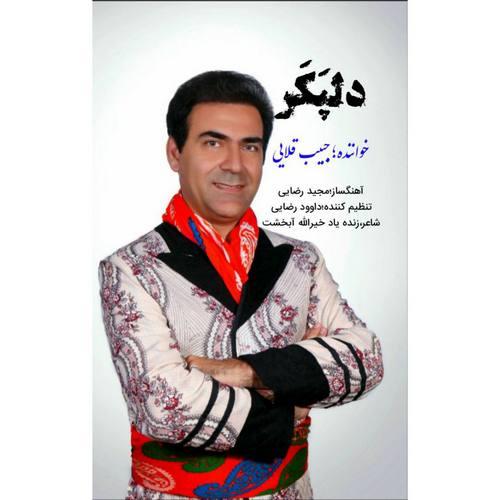 دانلود موزیک جدید حبیب قلایی دلپکر